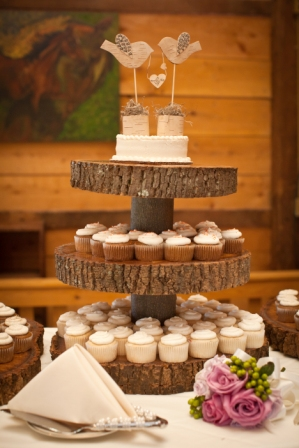 Wedding cake cupcake tower at Lingrow Farm wedding, Pittsburgh.