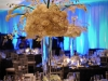 john-parker-band-wedding-at-the-peabody-177