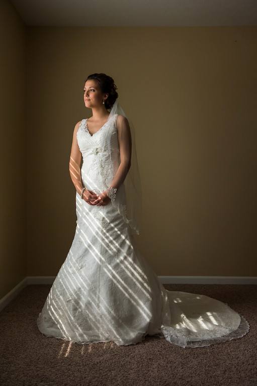 Montour Heights Pittsburgh Wedding Bride in Mermaid Dress and Cathedral-Length Veil