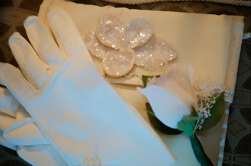 Oglebay Resort Pittsburgh Wedding - Bride's Gloves and Clutch