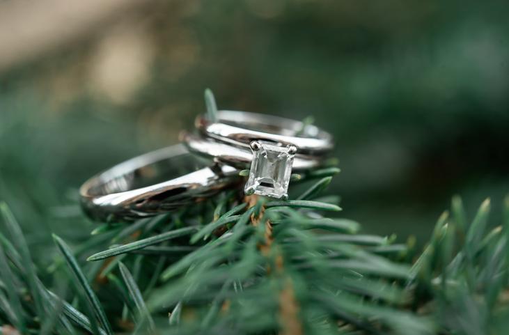 Longue Vue Club Pittsburgh Wedding: Rings on Garlands