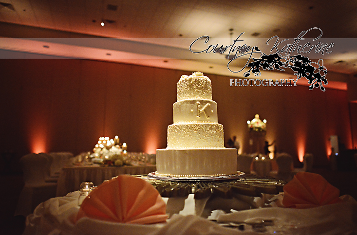 Blair County Convention Center Pittsburgh Wedding Venue Cake